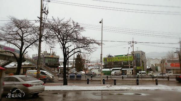 韓國下初雪囉~❄