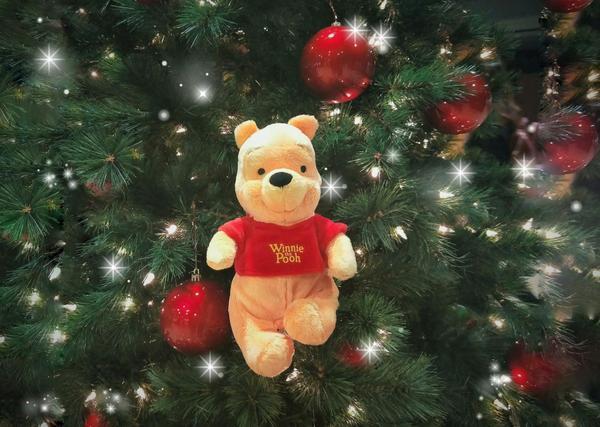 請聖誕老人給我們家維尼多一點蜂蜜吧🍯  🐻更多維尼instagram:@poohwithtsan