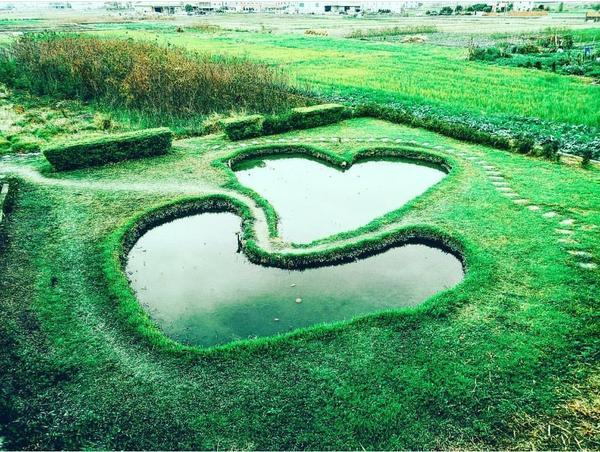 情人節約會景點👫雙心池塘是不是很浪漫 也很適合給另一半驚喜 想在情人節求婚的你們,趕快去吧 #求婚