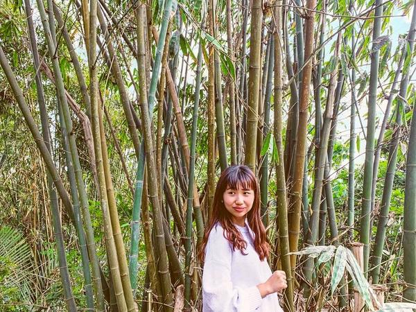 台南東山東原老街今日佛祖遶境在阿公家熱鬧🧨 下午閒暇之餘發現後面居然有竹林🎋 而且旁邊的一戶人家