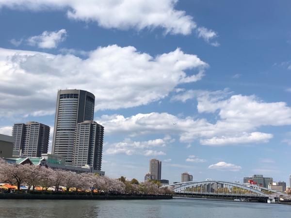 大阪造幣局と桜ノ宮公園關西地方最後一波賞櫻的選擇無非是造幣局了🌸 每年開放的時間不一樣所以出發前要