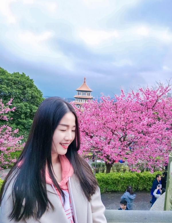 🌸淡水天元宮📷好攝程度:💛💛💛💛🖤 - 這次綻放的櫻花都比較遠🌸 原來有分花季的呀�