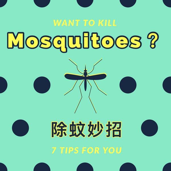 永遠打不到蚊子嗎?這幾招學起來馬上成為捕蚊達人   雖然現在正值秋季,蚊子相對於夏天明顯變少,但是還
