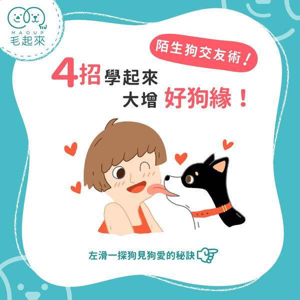 4招學起來大增好狗緣!【#先追毛起來IG】隨時發摟毛孩冷知識:www.instagram