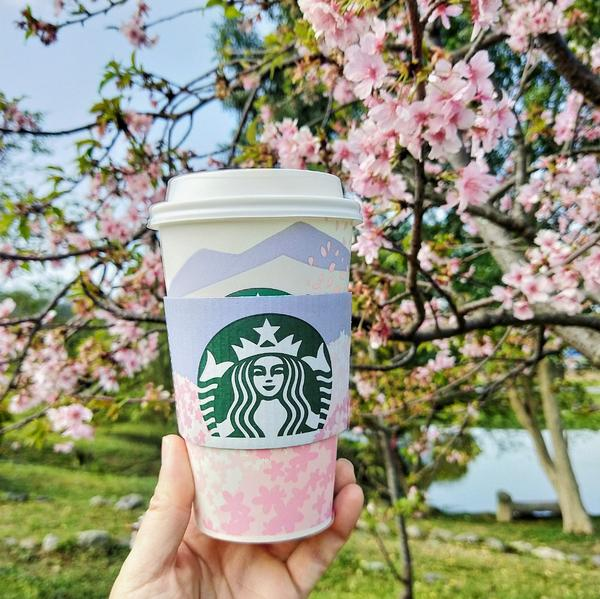 Starbucks星巴克外帶櫻花杯 | 粉粉嫰嫰超可愛Starbucks星巴克的外帶櫻花杯好粉嫰,