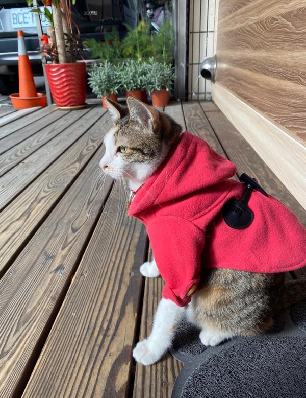 珊:還好啡傭小薇先幫我穿了衣服,不然早就被太陽騙到了!!!(冷)