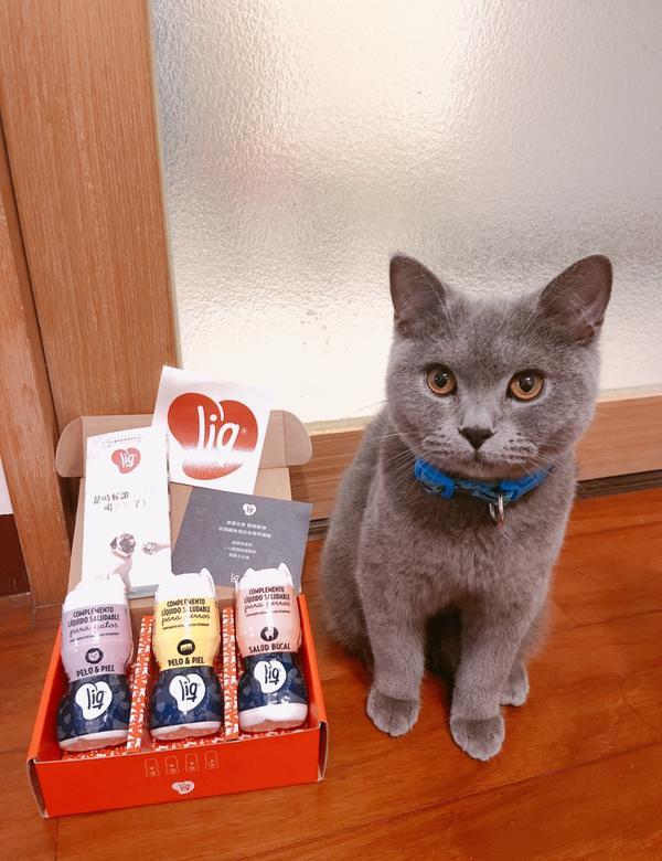 LIQ【寵物保健飲品】寵物飲料現在的寵物真的越來越幸福 除了有一堆看起來超好吃的零食以為 連飲料都有