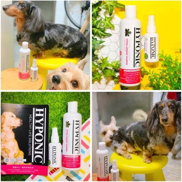 【寵物■清潔/保養】HYPONIC ■ 極致低敏潔毛露 x 柔順香氛很有感 & 保濕護膚噴霧 x 輕