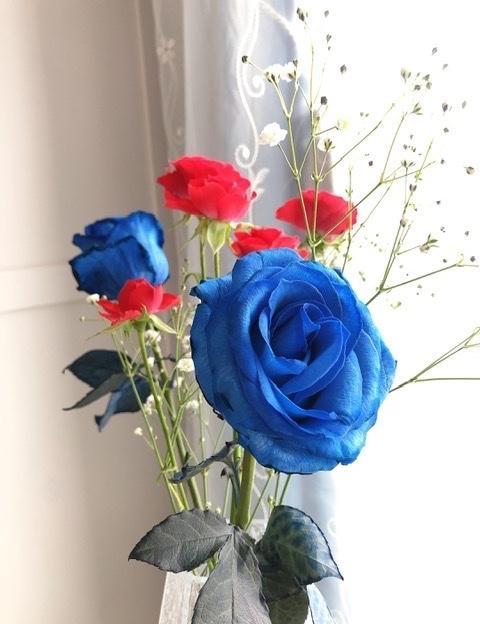 夢幻又浪漫的藍玫瑰🌹分享最近買的, 好美好夢幻, 這是真花唷🌹😊