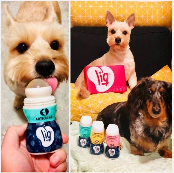 【寵物■保健】LIQ寵物保健飲料■毛髮/皮膚、骨骼/關節&口腔保健 x 毛孩保養不能等,補充營養LI