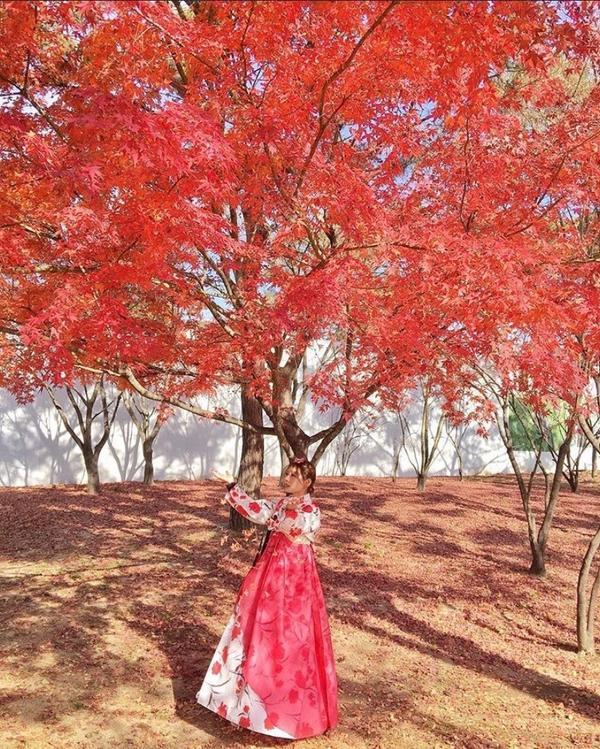 景福宮終於圓穿韓服的夢😍 在景福宮穿上韓服 真的好像活在古代一樣  #nina小腳丫大腳印👣 #