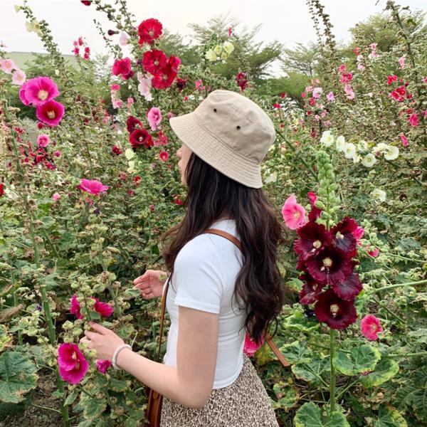 台南蜀葵花季🌞 拍出仙女照的好地方😍台灣🇹🇼 台南  要去看蜀葵花前還很擔心,花會不會都被吹