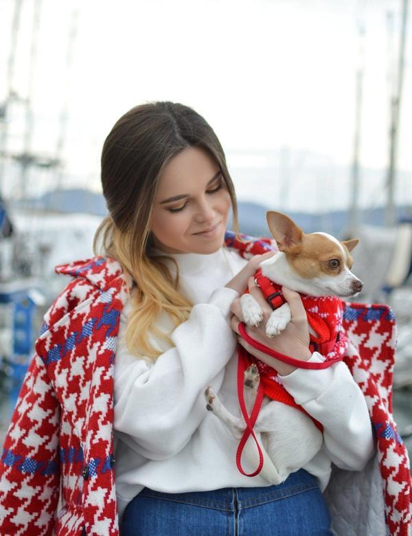 真・上流社會之小型犬女人 #都市人類圖鑑有一種女人,在很多方面都很天真,但是在我看來總有一種很難對付