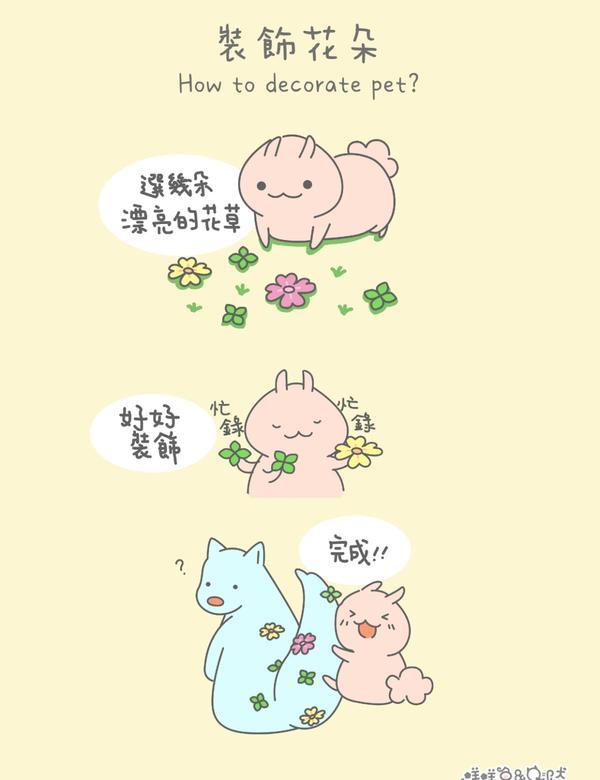 裝飾寵物~(つ´ω`)つ✿✿用花裝飾寵物可能是種新流行??趕快來試試看!(麻煩先做好被自家的貓貓扒臉