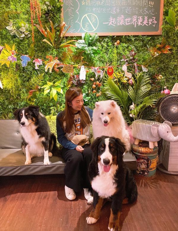 台灣美食 桃園食光機寵物友善餐廳📍食光機寵物友善餐廳 - 一起來跟薩摩耶療癒一下 - 📫地址: