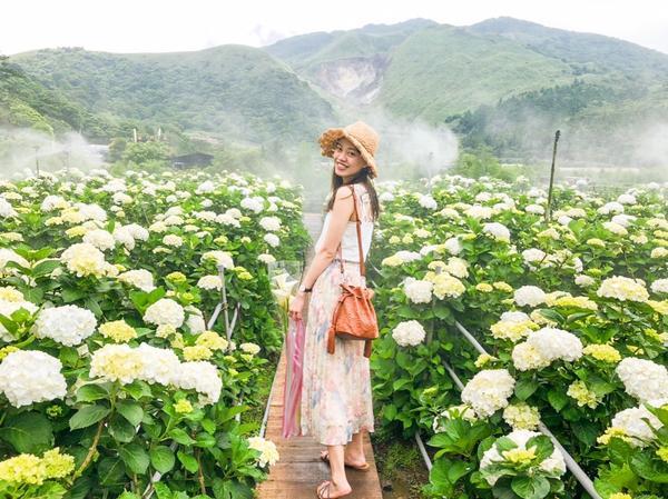 繡球花季開始了💐花,真的是浪漫的代表❤️  繡球花季開始了💐 大賞園海芋園除了可以欣賞前一陣子盛
