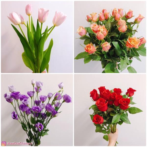 (園藝/建國花市) || 假日花農💐經典花王紅玫瑰、火焰落日色玫瑰和和荷蘭國花粉紅鬱金香|| Mi