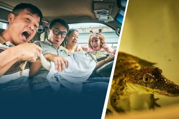 《做工的人》首播「演員演技全上線」衝口碑,戲精鱷魚參演討論度超高! 由HBO Asia、myVide