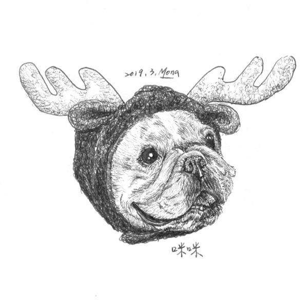 寵物頭像100畫(下)其實這個計畫是從2018年12月開始 直到2019年4月結束 墨納在臉書粉絲專