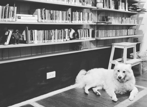 風和日麗唱片行可以在某處,發現有空間,存在音樂、下午茶、書籍、托托(寵物),就連廁所角落也不放過可以