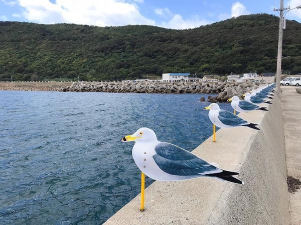日本瀨戶內海 女木島 來海景第一排的海鷗停車場散步吧#女木島#瀨戶內#日本#megijima#set