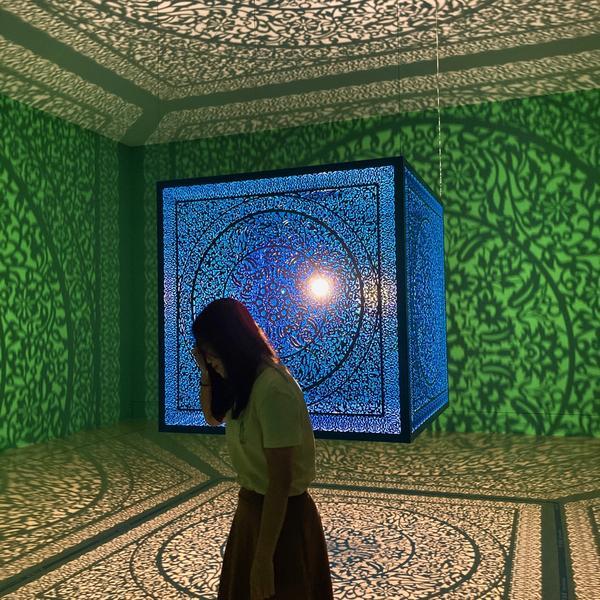 奇美博物館|影子魔幻展|0613 𝕤𝕒𝕥. 🎞🌷熱愛可抵歲月漫長。📽 - 太多時候忽略了