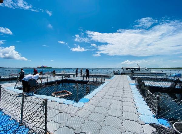 [澎湖 親子行程] 牡蠣、海鮮粥吃到飽的星光海洋牧場澎湖還有一個很有趣的景點是海洋牧場,我們每次都會