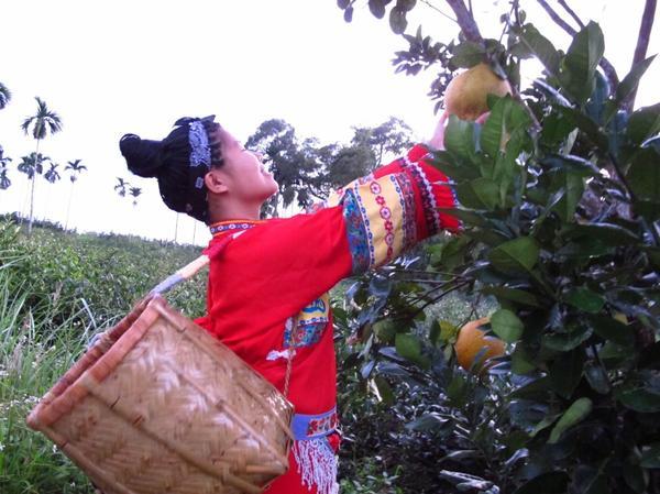 【夏天排毒就靠這個水果|越吃越美就靠它】今天不講化妝品美容,我們來談談如何透過天然飲食來解決根本性的