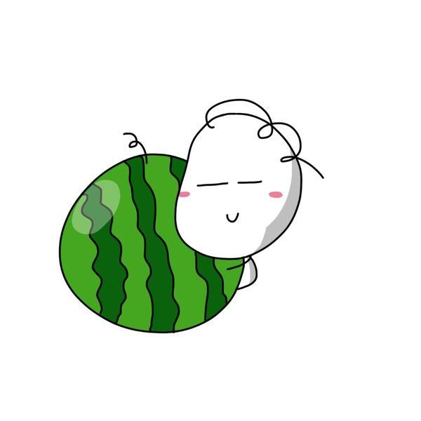 一卷毛的小廚房首先,要挑選合適的西瓜。一般來說,台灣在立秋後的小玉西瓜就非常適合!因為瓜
