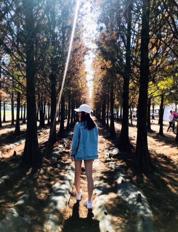 📌台南📌林鳳營落羽松這裡一定要分享一下滿滿的落羽松樹林! 風景漂亮拍照的人也不多 只是停車位蠻難