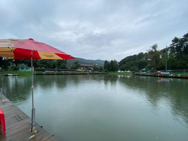 去這裡掉了好幾次🐟,釣一次一人三萬,兩人一起五萬韓元,很划算而且超好玩,風景又美,狗狗也玩得很開心