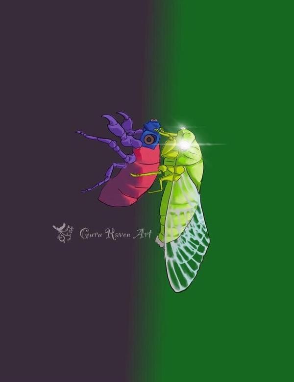 羽化:脫下中華民國的外殼,準備起飛的台灣 #insects #cicada #insectart #