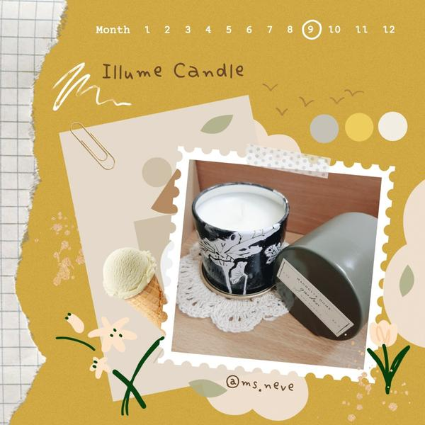 【Illume Candle 居家系列 Magnolia Home 香氛蠟燭▪開箱使用心得】Home