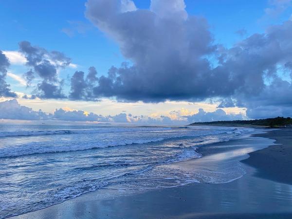 海邊的森林紀事—因為相遇而成為各自最特別的樣子2020.09.14海邊的森林紀事  這陣子都沒有什麼