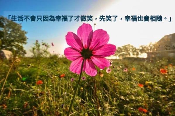 生活就是微微笑😊【早安分享】  「生活不會只因為幸福了才微笑,先笑了,幸福也會相隨。」  早安,用