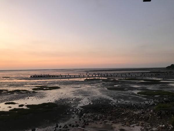 """新竹景點-香山濕地賞蟹步道這次行程將""""香山濕地賞蟹步道""""擺在日落時,這樣就可以看看不同的景象。但因為"""