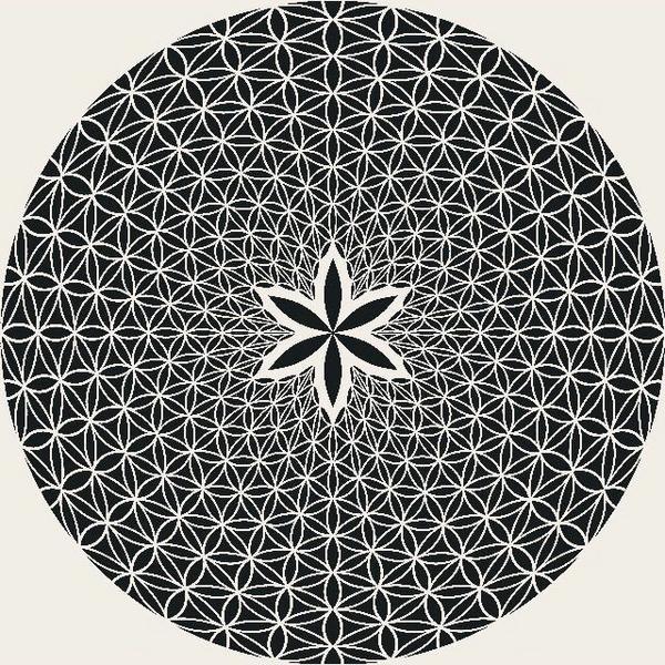 維度二維宇宙只是三維宇宙的一個「面」。如同把一隻螞蟻關在密閉房間,不管是爬到地板、牆壁、天花板...