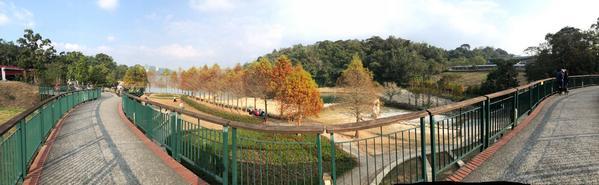 日月潭向山遊客中心這裡的無邊際很好拍照眺望平台可以眺望整個日月潭,現在的季節還可以看到楓葉,環潭自行