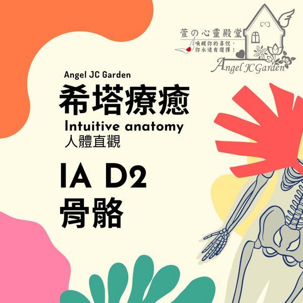 希塔療癒-人體直觀 θ-IA D2 骨骼ThetaHealing-IntuitiveAnatomy希