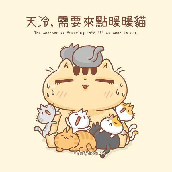 天冷,我想來點暖暖貓你有暖暖包、我有暖暖貓這幾天真是爆冷der需要來上一打暖暖貓啊.*不屑是種正能量