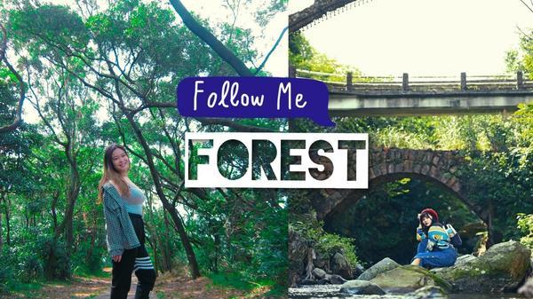 【台灣北部】想走森林系秘境路線,不能錯過的6個北部景點推薦撰文編輯/#家甄Janet#布