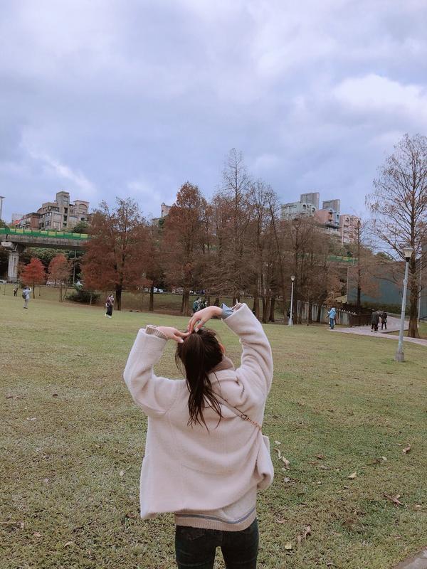 台北市的落羽松📍大湖公園落羽松 其實只有小小一片 但是在台北捷運可以輕鬆到達 已心滿意足  #台北