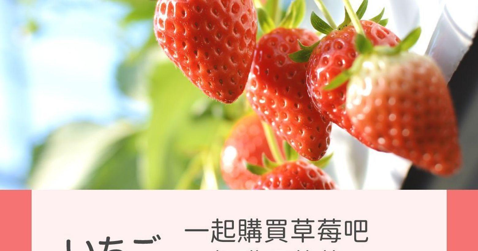 日文加減教|いちご◾️いちご:草莓◽️いちご狩り(いちごかり):採草莓草莓季到了😍一起