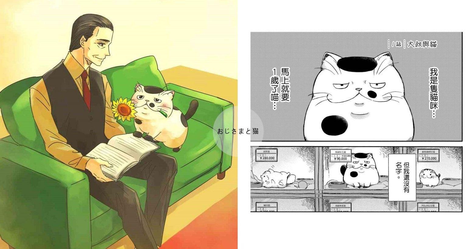 【漫畫】貓奴必看!《大叔與貓》療癒又感人,你是不是也養著一隻「福丸」?2021.02.04/文:Yu