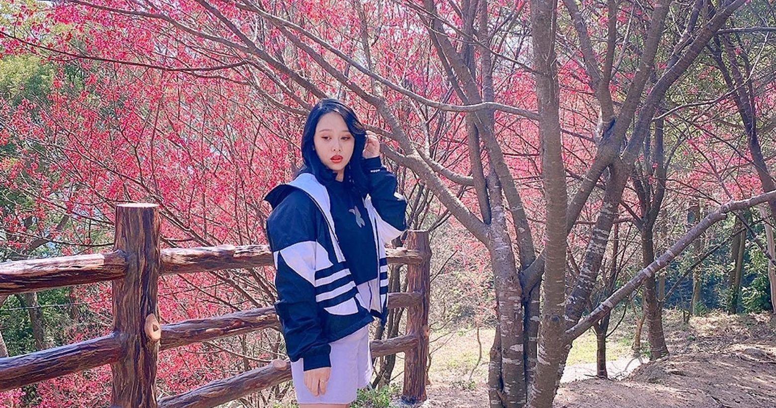 協雲宮|粉嫩嫩櫻花季📍協雲宮|櫻花步道*本篇是2021.02.07的花況*櫻花的粉嫩真的很療癒🌸